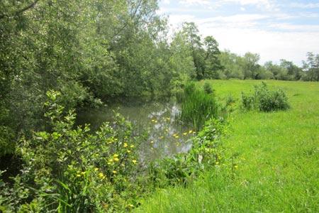 fishing river chew keynsham uk