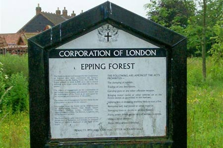 Photo from the walk - Nazeingwood Common from Epping Green