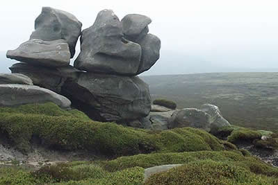 Barrow Stones - gritstone sculptured by the wind and rain
