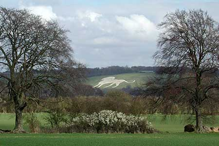 Photo from the walk - Whipsnade & Codling Bank  from Robertson Corner