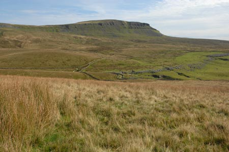 Pen-y-ghent from Whitber Hill