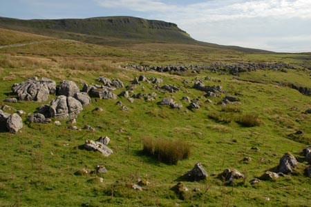 Pen-y-ghent and Horton Scar