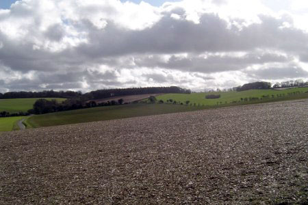 Photo from the walk - Farleigh Wallop and Ellisfield from Cliddesden