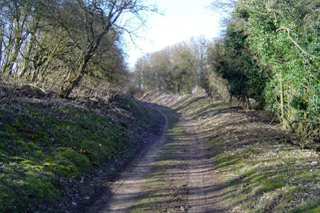 The disused railway heading back to Basingstoke