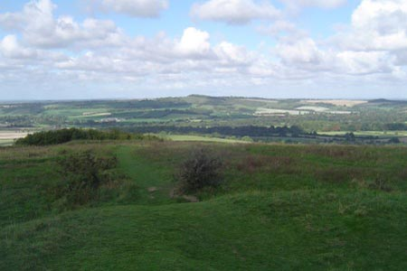 View to Beacon Hill from Old Winchester Hill