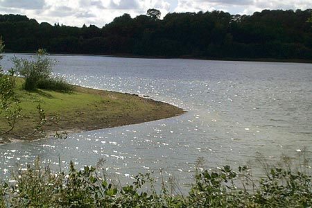 Ardingly Reservoir from the eastern shore