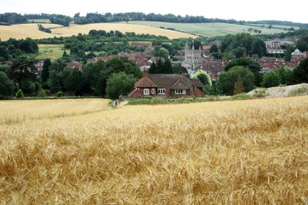View overlooking Amersham Old Town from Parsonage Wood