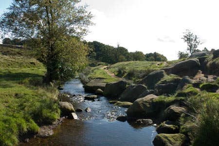Burbage Brook in  the ground of Longshaw Estate