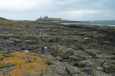 Photo from the walk - Dunstanburgh Castle from Craster