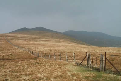 Photo from the walk - Lonscale Fell & Latrigg from Underscar Lane