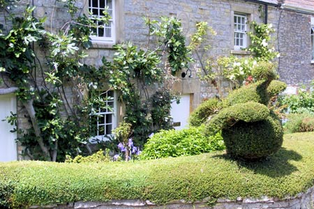 Topiary at a cottage in North Wootton
