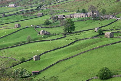 Photo from the walk - Muker & Upper Swaledale from Keld