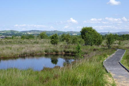 Photo from the walk - Cors Caron from Tregaron