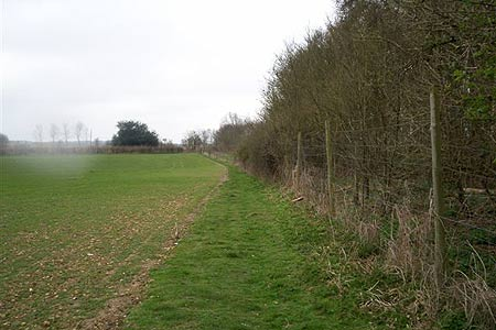 Codicote Road near Ayot St Lawrence