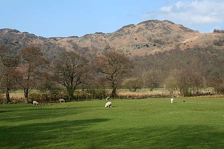 Photo from the walk - Great Gable from Borrowdale Youth Hostel