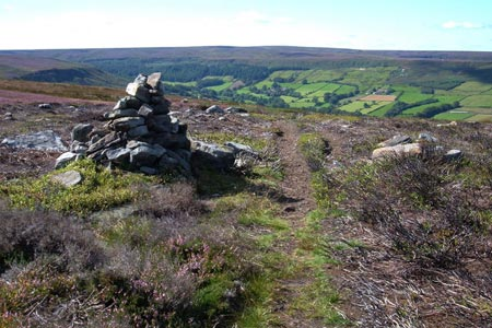 Photo from the walk - Little & Great Fryup Dales from Duck Bridge