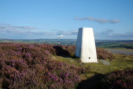 Photo from the walk - Leaholm Moor from Scaling Dam