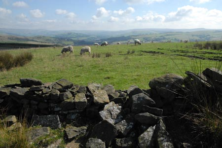 View east to Kinder Scout from the Gritstone Trail