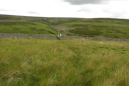 Moorland above Middleton-in-Teesdale