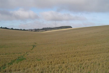Hannington TV mast seen from Plantation Hill