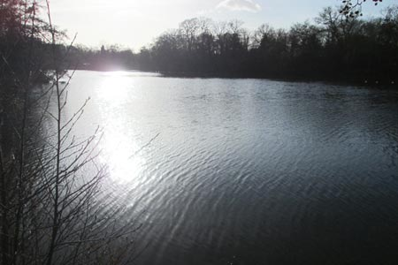 Sunlight gleaming on the boating lake, the  Highams Park