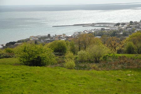Lyme Regis from the South West Coast Path