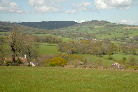 View of Dorset countryside near Charmouth