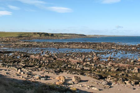 The coast between Fife Ness and Cambo Ness