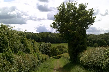 Public bridleway approaching Flaunden Bottom
