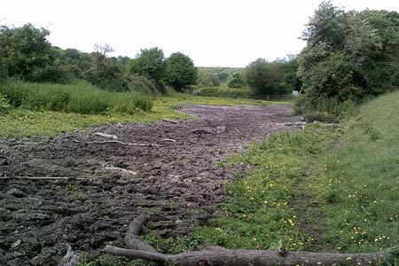 Dried up water bed at Sarratt Bottom