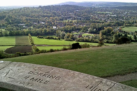 Photo from the walk - The Box Hill Hike