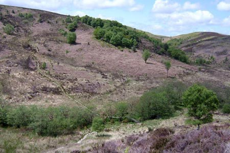 Photo from the walk - Burn Howe Rigg from Jugger Howes