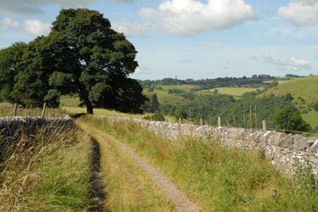 Photo from the walk - The Manifold Valley from Wetton