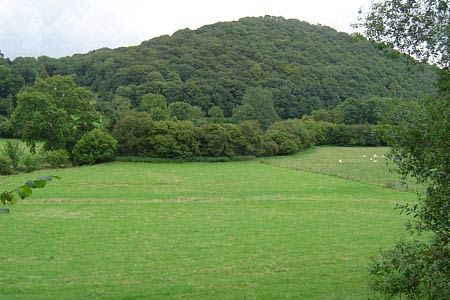 Pyon Wood conceals a hill fort