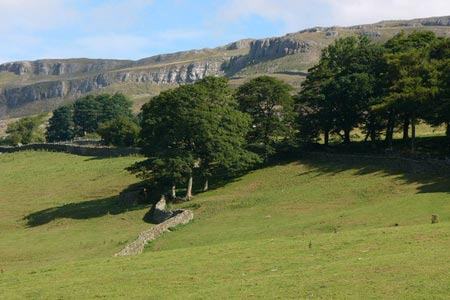 Photo from the walk - Nappa Hall & Whitfield Gill Force from Askrigg