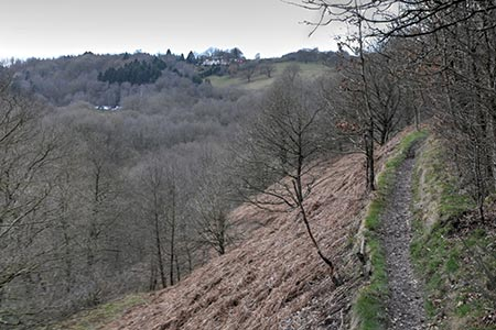 Photo from the walk - Churnet Valley from Consall Nature Park