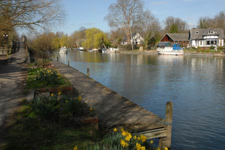 Photo from the walk - Staines to Windsor along the River Thames