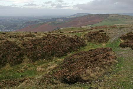 Summit of Penycloddiau Fort with old ditches