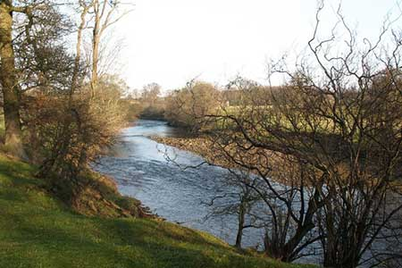 Photo from the walk - River Ure & Nutwith Common from Masham