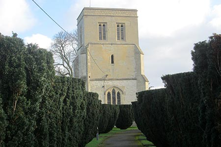 The church at Cheddington between an avenue of yew trees