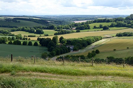Free North Wessex Downs Walk - Coombe Gibbet & Walbury Hill near Inkpen