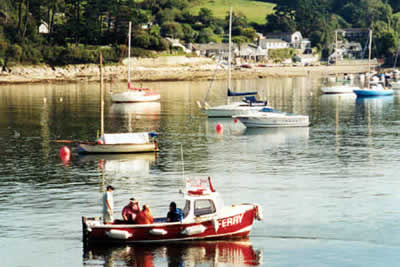 Photo from the walk - Helford Passage & Frenchman's Creek