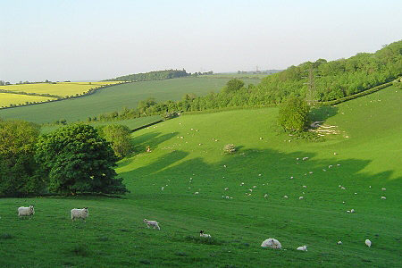 Another spectacular view of Watership Down