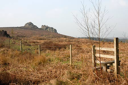 Photo from the walk - Linley Hill and Linley from The Bog