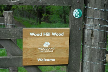 The entrance to Wood Hill Wood, Tillicoultry