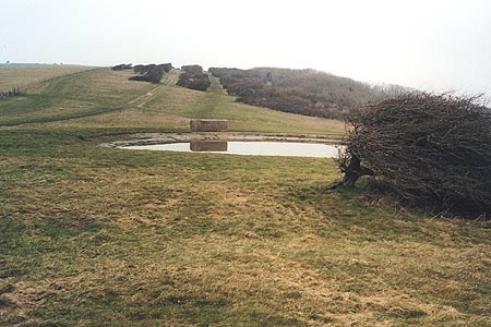Dewpond on the Downs above Eldon Bottom