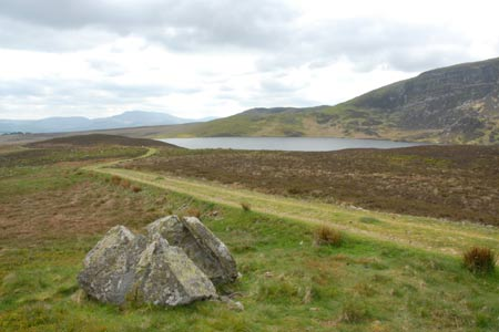 Photo from the walk - Arenig Fawr from Arenig near Llyn Celyn (Route B)