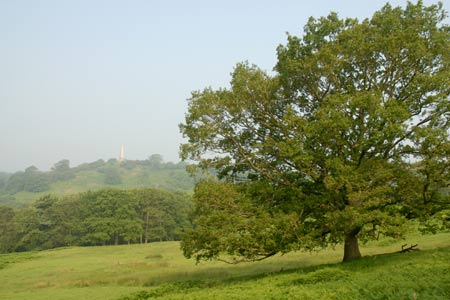 Photo from the walk - Herefordshire Beacon from Hollybush