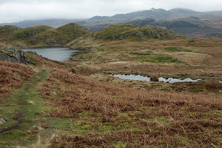 Looking back to Blea Tarn from near Siney Tarn