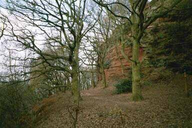 Photo from the walk - Cheshire Lanes and Woodhouse Hill Fort